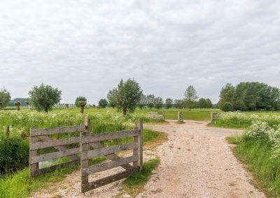 Wandelen en fietsen in de Betuwe - Golfbaan Landgoed Welderen